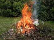 feux-jardin